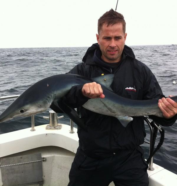 Big game blue shark fishing mullaghmore for Tuna fishing games