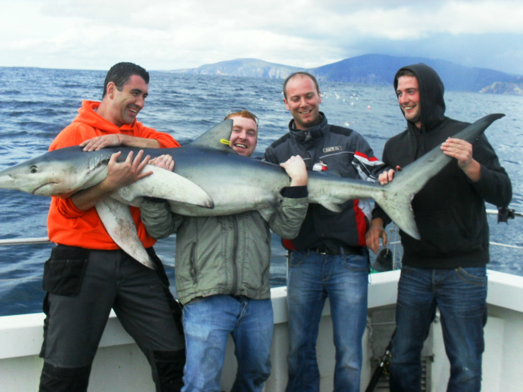 Big game fishing mullaghmore big game fishing sligo for Shark fishing games