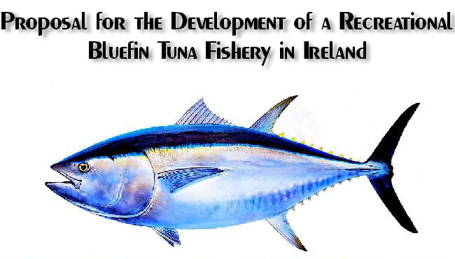 Bluefin Tuna Fishery Proposal