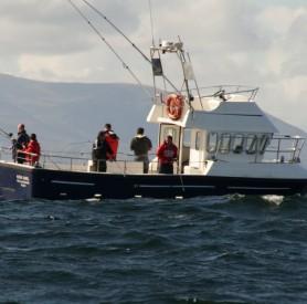 Mullaghmore Sea Fishing