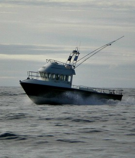 island trips from mullaghmore